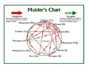 Mulder's Chart